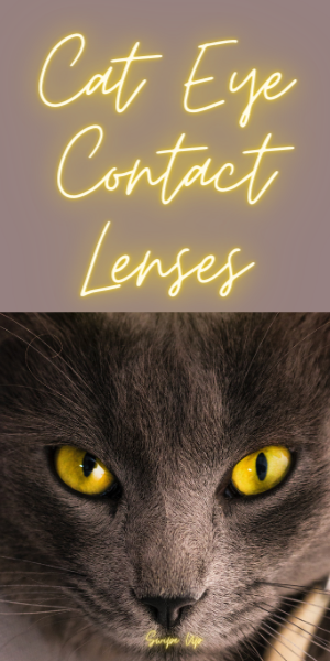 Cat Eye Contacts Lenses